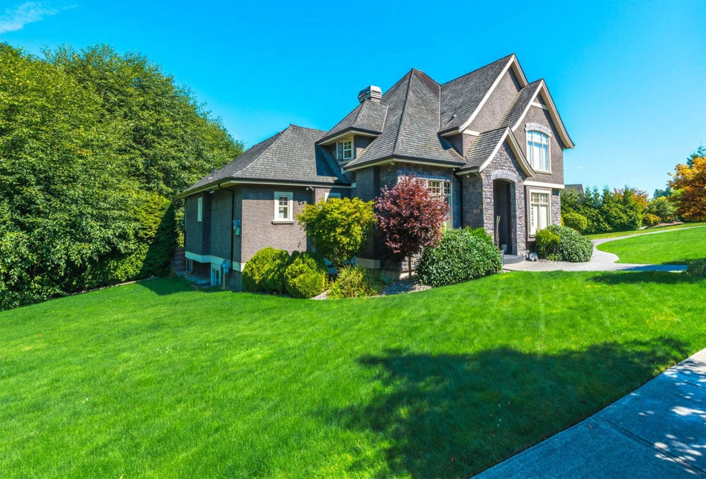 Professional Lawn Care Services In Commerce Mi Top Lawn