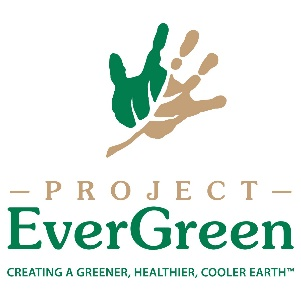 Image of Project Evergreen