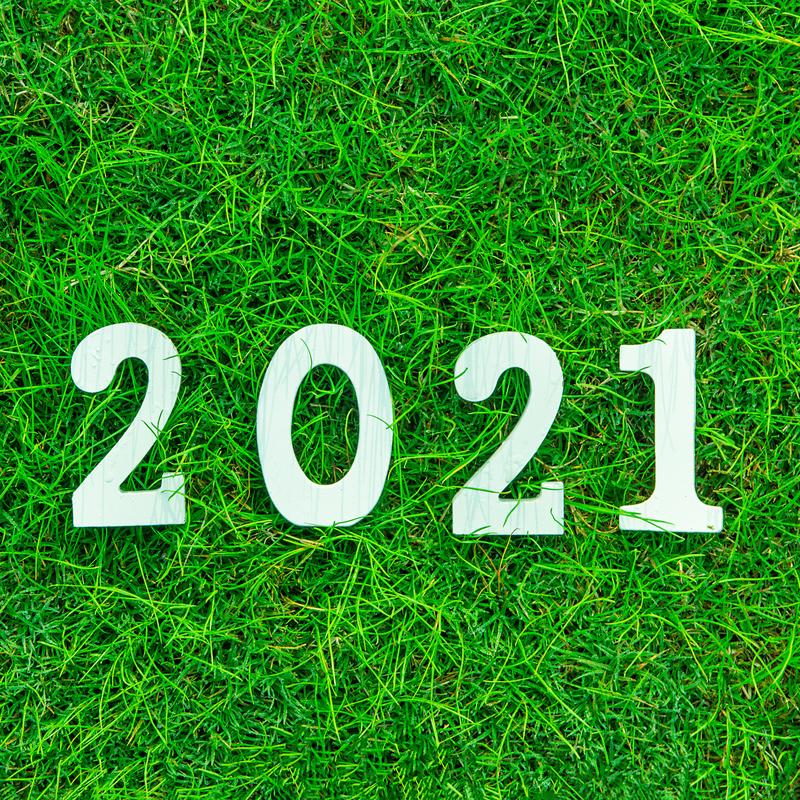 2021 lawn