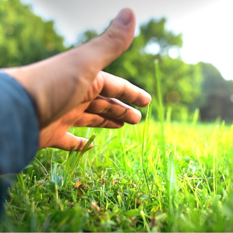 mans hand on grass